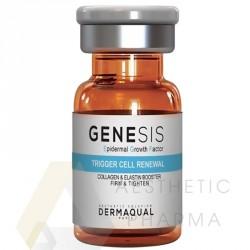 Dermaqual EGF Genesis 10ml Komórki macierzyste Koenzym Q10 Czynniki wzrostu